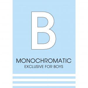 Monochromatic collection